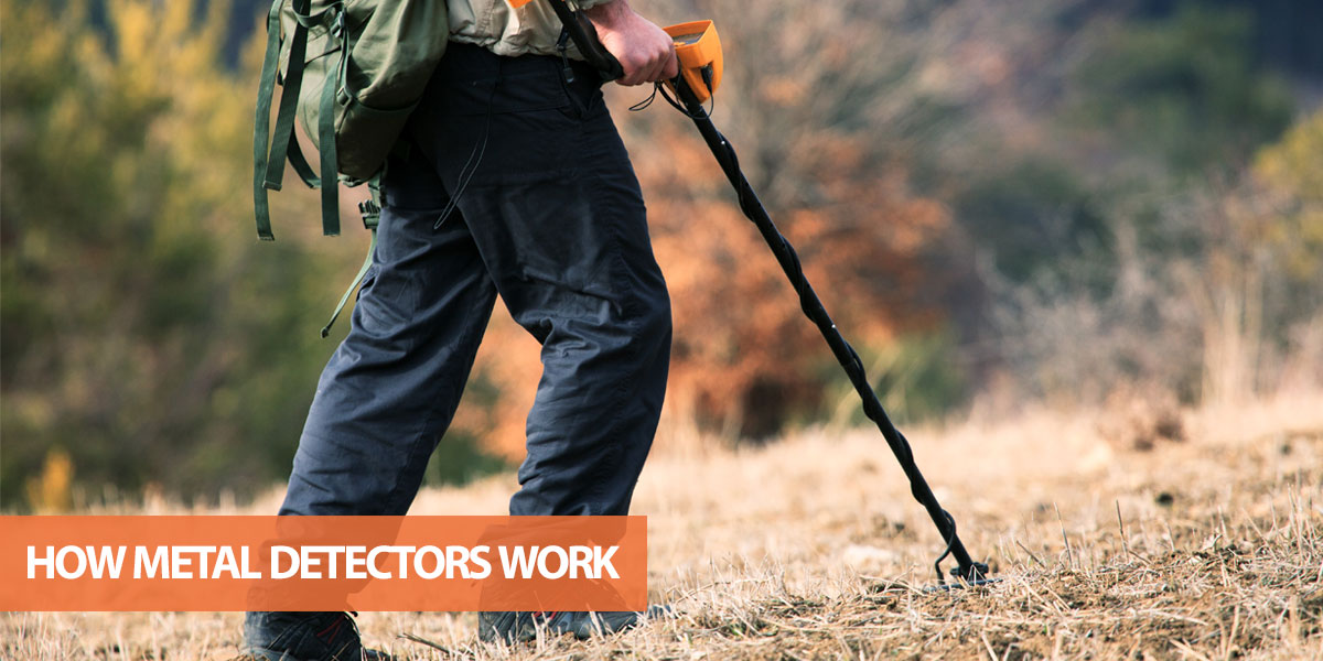 How Does a Metal Detector Work? (In Plain English)